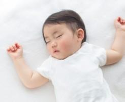 寝床の確保TOP写真