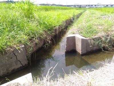 用水路のマス