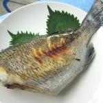 黒鯛(チヌ)の塩焼き