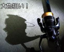 ぶっこみ釣りTOP写真