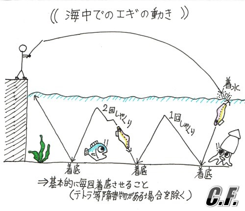 海中でのエギの動き図
