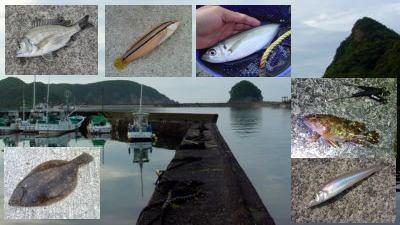 五目釣りTOP写真