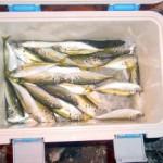 家族で楽しむさびき釣り