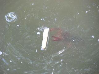 ゲーム性の高い釣り方