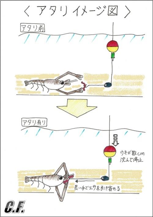 テナガエビ釣り_アタリイメージ図