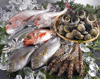 アニサキスが心配な人でも食べられる魚介TOP写真