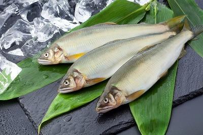 淡水魚(鮎)